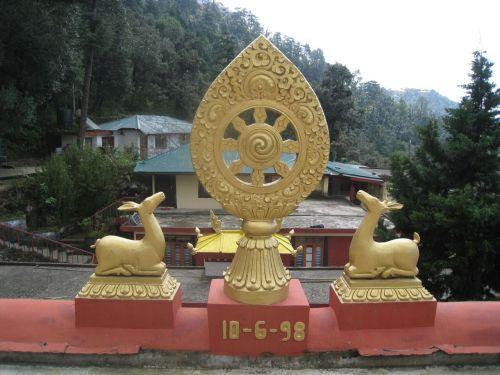 Auszeit im buddhistischen Kloster, Dharamsala Indien