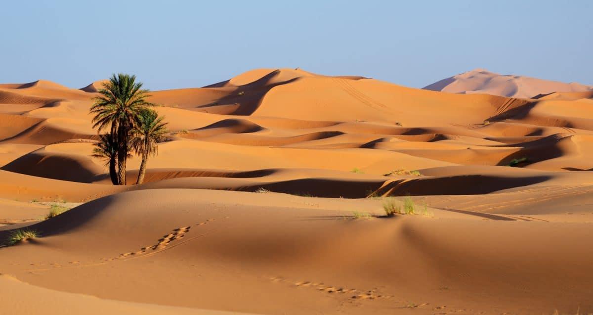 Wüstenerlebnis und Kameltrekking in der Sahara, Marokko