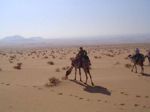 Sinai Wuestenreisen