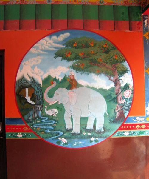 Klosterreisen Dharamala buddhistisches Kloster Bild mit Elefant