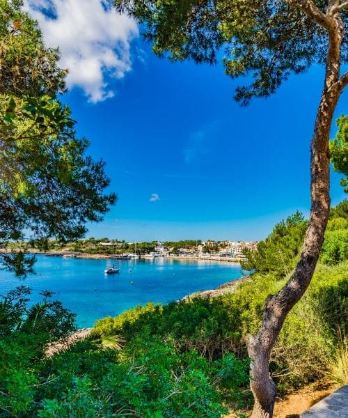 Landschaft Mediterran Meer Bucht Insel