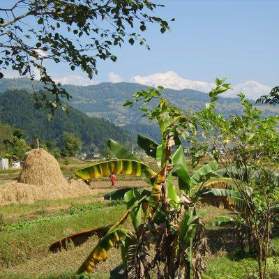 Meditationskurs und Trekking im Nepal